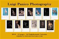 Calendario 2016 13 Pagine in formato A3 di bellissime fotografie. Ottima idea