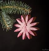 Ecco le nostre bellissime decorazioni per il tuo Natale e la tua casa Sono real